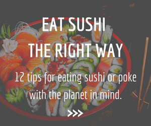 Eat sushi the right way-300x250